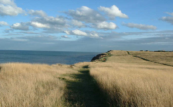 Aldbrough Cliffs